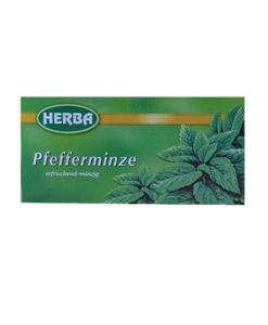 Herba infuso menta